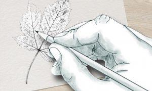 Atelier dessin en duo parent-enfant @ Ruban Vert de Mareuil